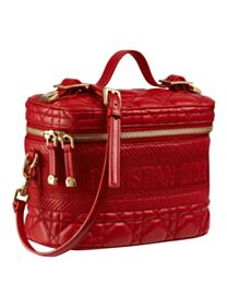 Christian Dior The Leather Vanity Bag