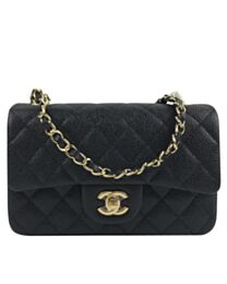 Chanel Small Classic Flap Bag A01116