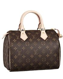 Louis Vuitton Speedy M41528 Brown
