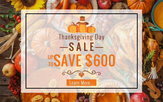 2020 Thanksgiving day sale